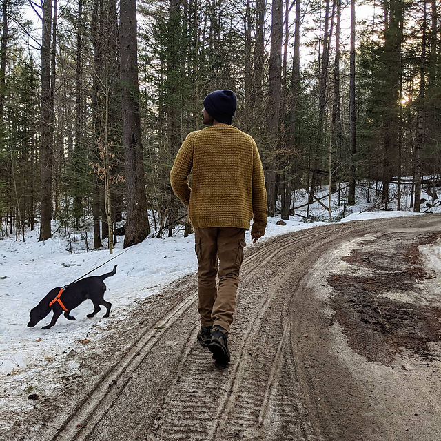 A man walking his hound in the woods wearing a yellow textured knit sweater.