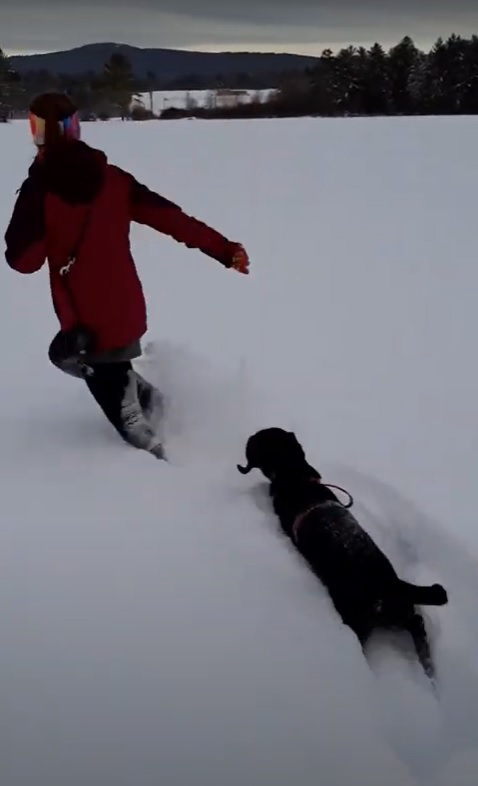 A young woman and her dog running through a field covered in three feet of snow.